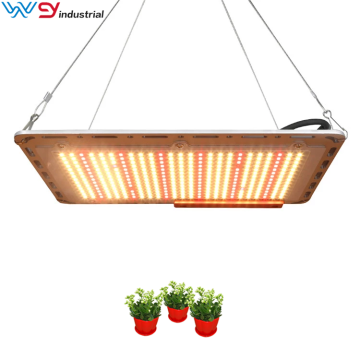 Samsung quantum board led horticulture grow lights