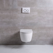 Wall Hanging Toilet With Bidet Enema Nozzle