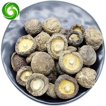 High-quality organic shiitake mushrooms, pure and natural, enhance immunity, anti-aging