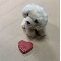 Heartbeat Box for Reborn Doll Pet Toy Plush Toy Amazon Popular Heart Beating Box Pet Toy Simulated Heartbeat Box