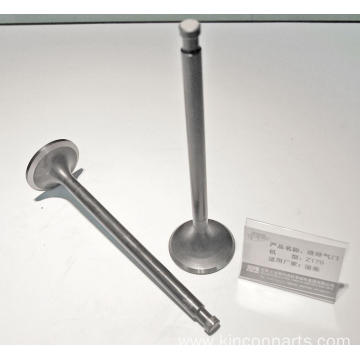 Engine Valves  Z170