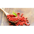 fresh dired ningxia best goji berry