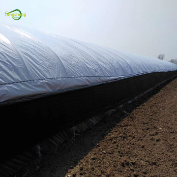 Greenhouse cover plastic sheet light deprivation panda film