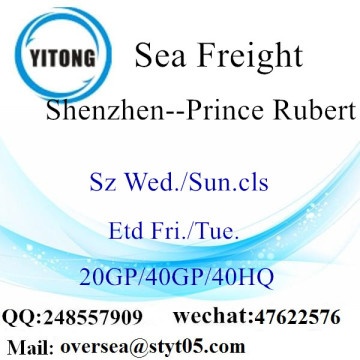 Shenzhen Port Sea Freight Shipping To Prince Rubert