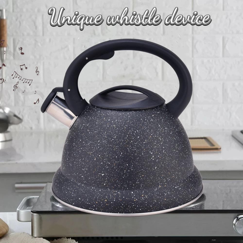 Black Durable Color Stainless Steel Whistling Water Kettle
