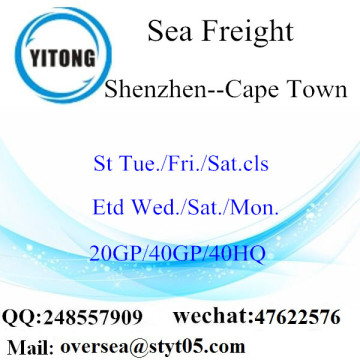 Shenzhen Port Sea Freight Shipping To Cape Town