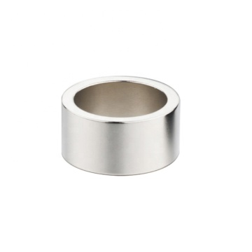 multipole high-end audio ring  neodymium magnet