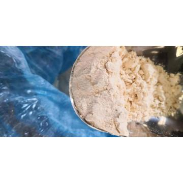 Hot sales wholesale garlic powder price