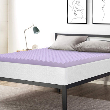 Comfity Back Sleep Friendly Foam Mattress Pad