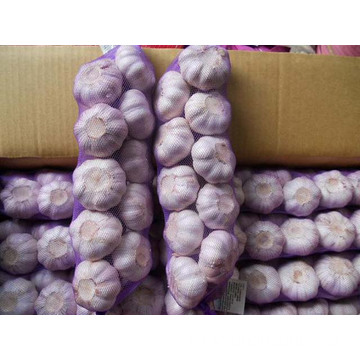 Good Quality Garlic Products Garlic Braids