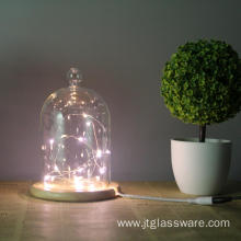Glass Dome Oak Base With LED Nights