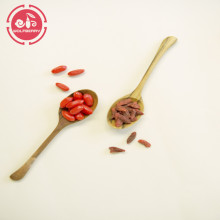 Wolfberry/Lycium Barbarum / nature taste goji berries