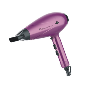 Color Logo Customized Wall Mounted Hotel Hair Dryer