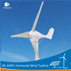 DELIGHT 1KW Horizontal Axis Wind Generator