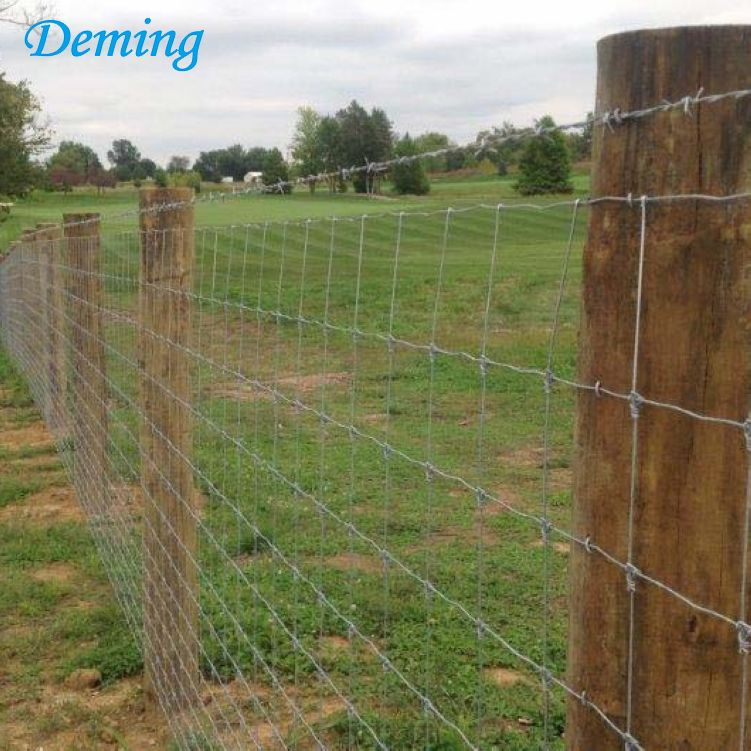 hot dipped galvanized low cost goat farm fence