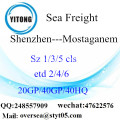 Shenzhen Port Sea Freight Shipping To Mostaganem
