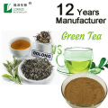 Pure Green tea extract Powder