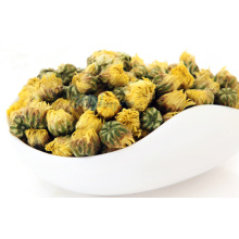 Dried chrysanthemum buds flower