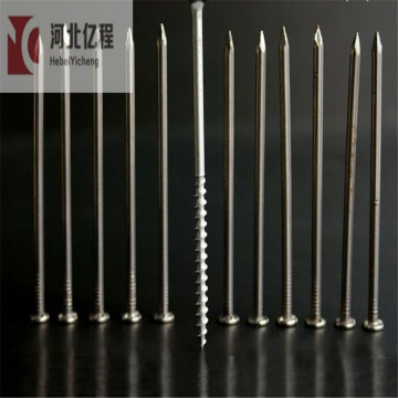 large head galvanize Concrete Nails