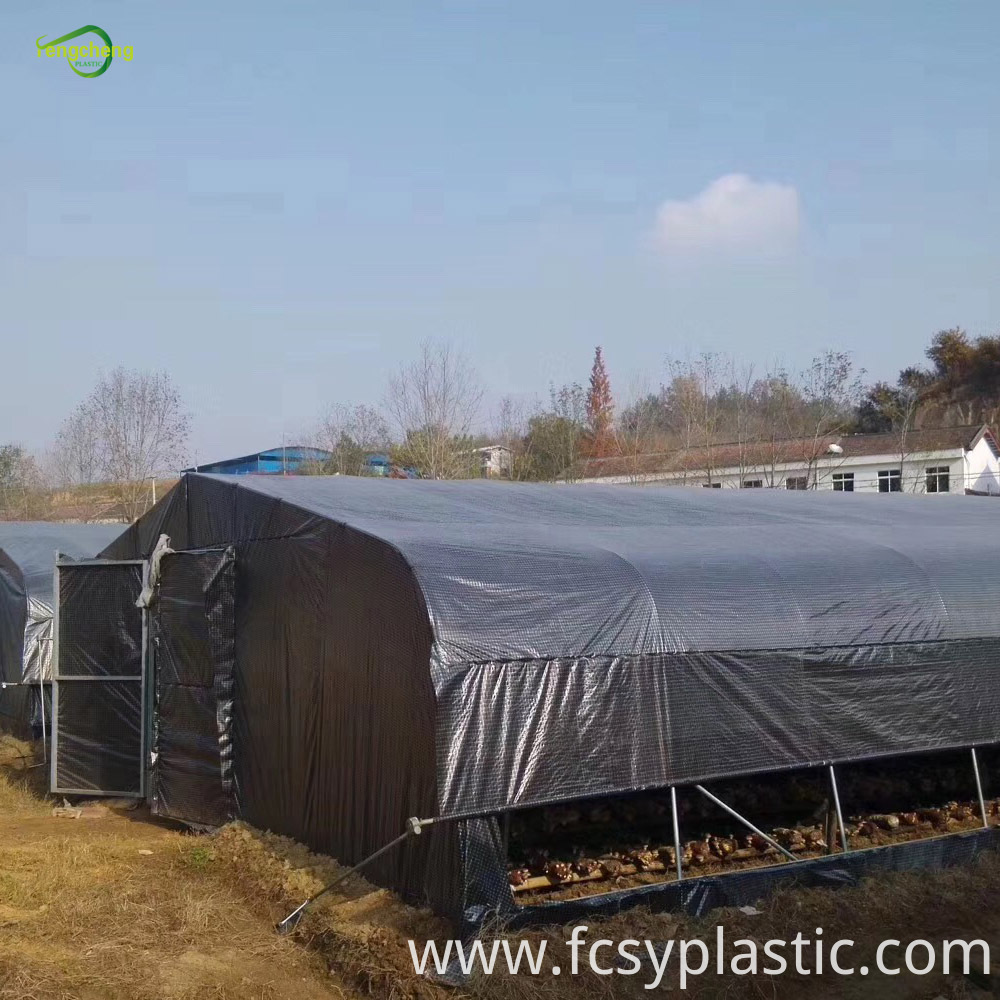 Black Transparent Greenhouse Cover