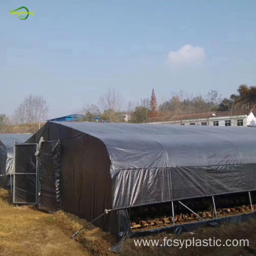 15% transmittance black grid clear tarpaulin