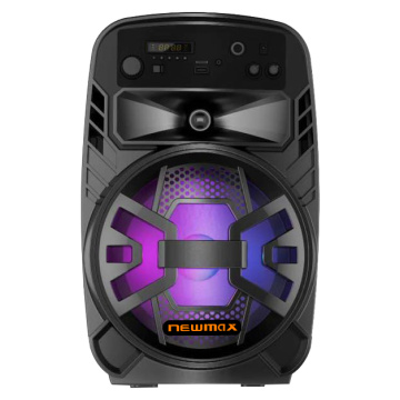 Portable Trolley DJ Speaker with Microphone