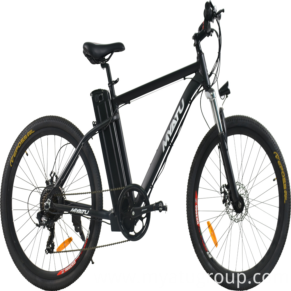 Male electric bicycle