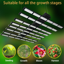 Indoor Vertical Farming Led Grow Light 640 Watt