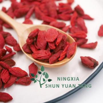 Dried Chinese wolfberry Goji Berry