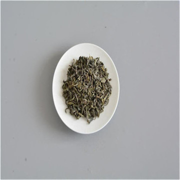 Chinese factory green tea with caffeine