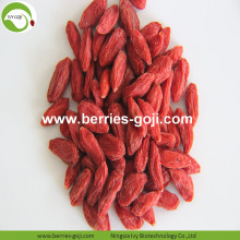 Factory Supply Fruits Super Food Offer Goji Berry