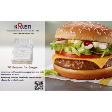 Food additive transglutaminase in burger