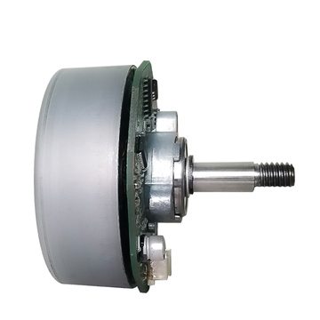 DC Motor Brushless, 48V 1000W Brushless DC Motor & DC Brushless Fan Motor 12V Customizable