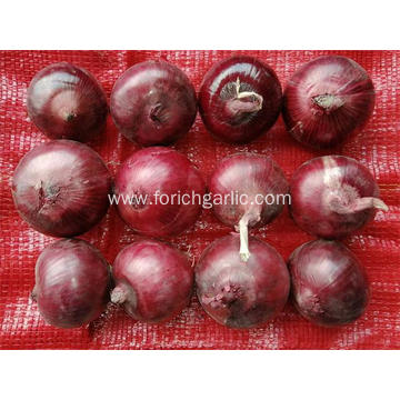 Best Quality Fresh 2020 Red Onion
