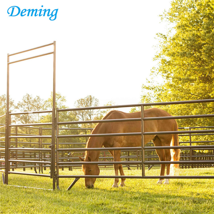 Used horse corral fencing panels cattle livestock panels