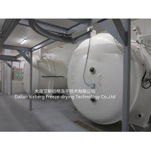 Vacuum Freeze-drying Equipment  125