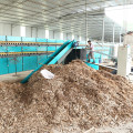 Automatic Equipment Of Veneer Dryer