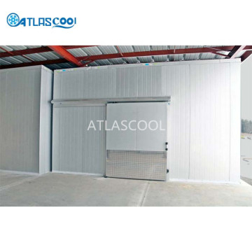 Cold Storage Room with Bitzer Compressor Unit