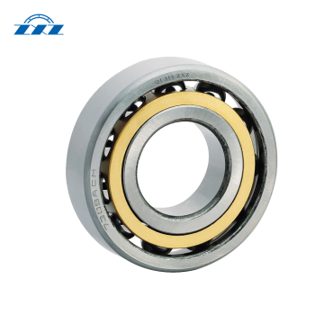 Single-Row Radial Drive Shaft Center Support Bearing