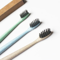 Toothbrush Capable Of Degrade Wheat Straw