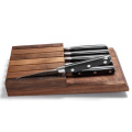 Garwin stainless steel full tang steak knife