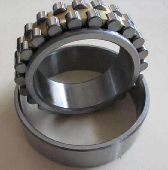 Cylindrical Roller Bearing 1024