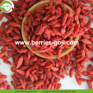 For Sale Nutrition Natural Conventional Goji Berry