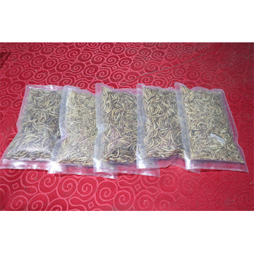 Dried Tenebrio Molitor For Pet Feeding 60% Protein