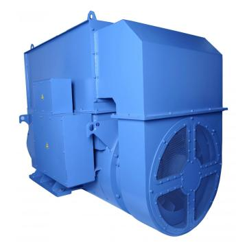 Low Voltage 110V IP55 Generator