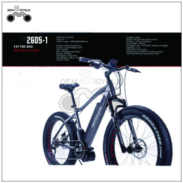 New arrival li-ion battery mid drive ebike