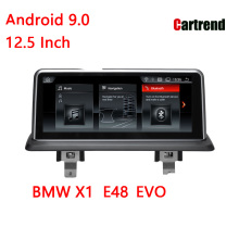 Cruscotto Stereo Radio BMW X1 E48