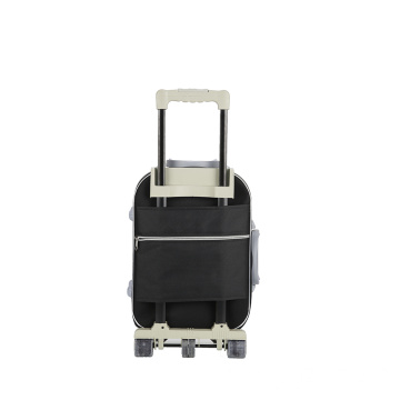 lightweight Carry-On Spinner Trolley
