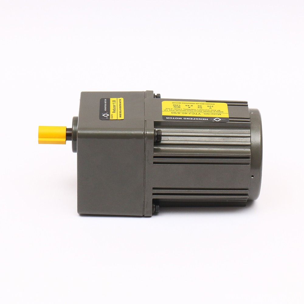 Low Speed 40W 110V/220V Gear Motor with Gearbox