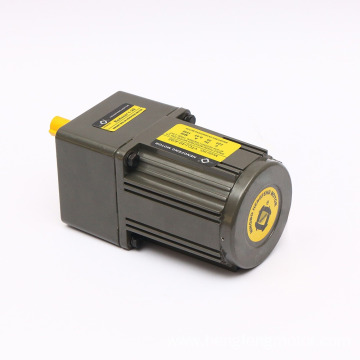 40W 110V/220V AC Gear Motor with Gearbox